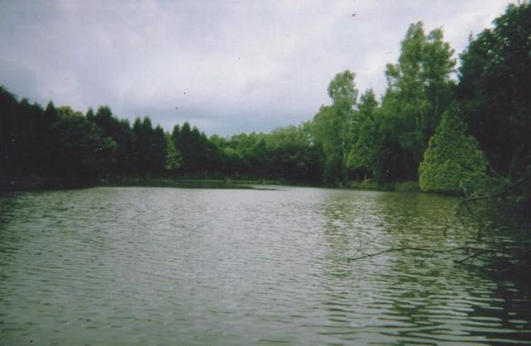 Property for Sale in Creuse, Guéret, Nouvelle Aquitaine, France