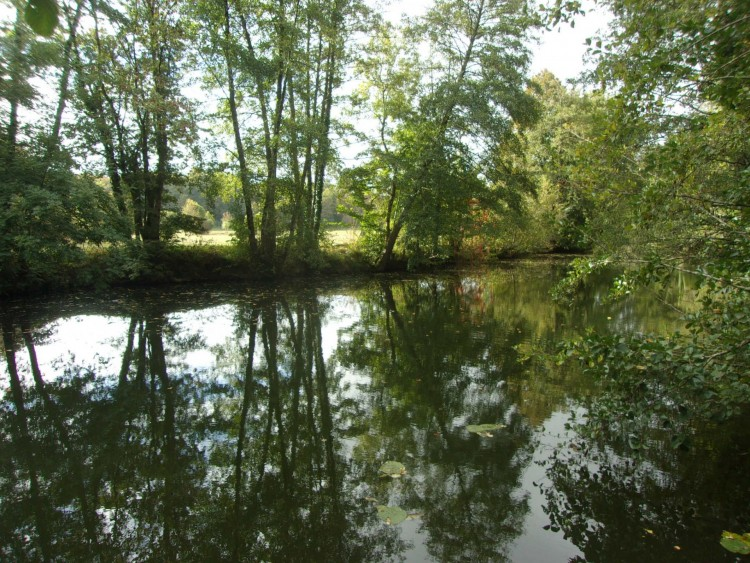 Property for Sale in Fishing village house!!, Indre, Near Le Blanc, Indre, Centre-Val de Loire, France