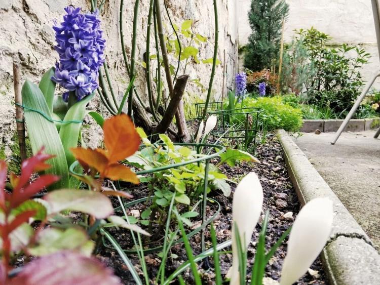 Property for Sale in An elegant architect designed 3 bed town house with secluded garden, Lot-et-Garonne, Near Nérac, Lot-et-Garonne, Nouvelle-Aquitaine, France