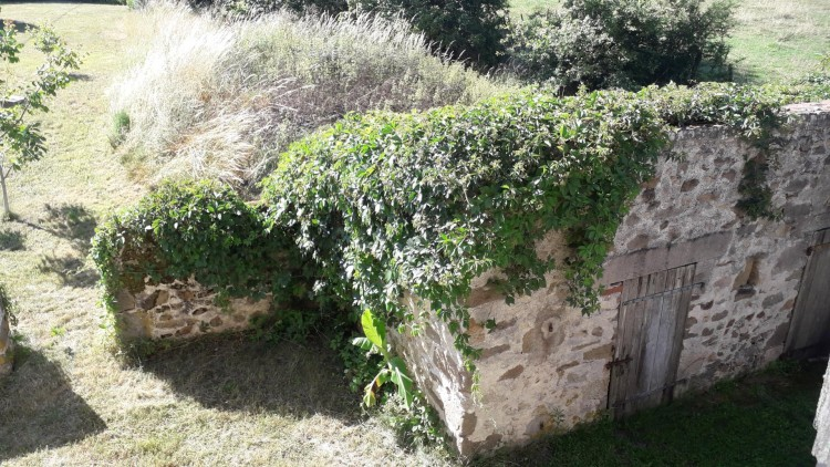 Property for Sale in Great value house to update, sought after village!!, Vienne, Near LATHUS ST REMY, Vienne, Nouvelle-Aquitaine, France