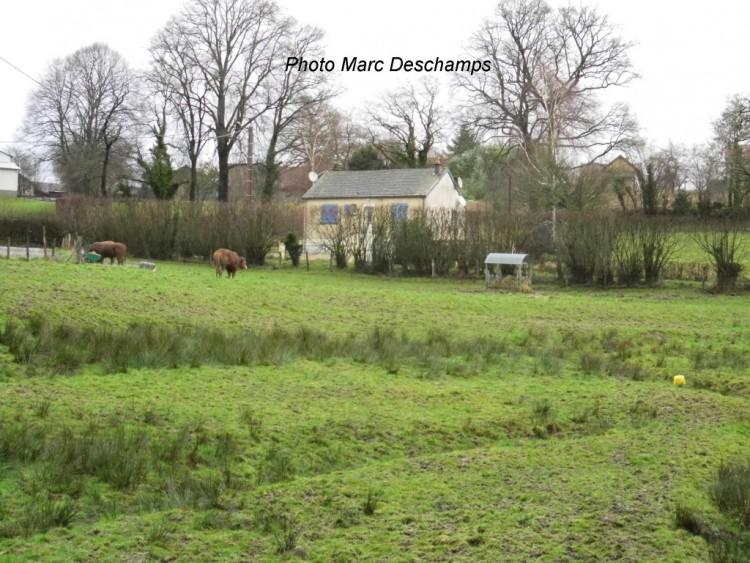Property for Sale in For Sale House 3 Rooms Saint-Dizier-Leyrenne, Creuse, Nouvelle Aquitaine, France