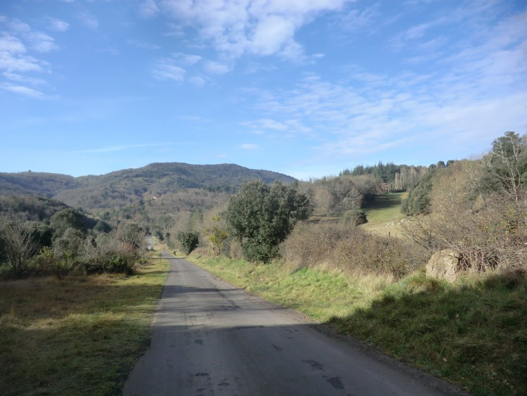 Property for Sale in Idyllic rural property with income potential, Aude, Near Limoux, Aude, Occitanie, France