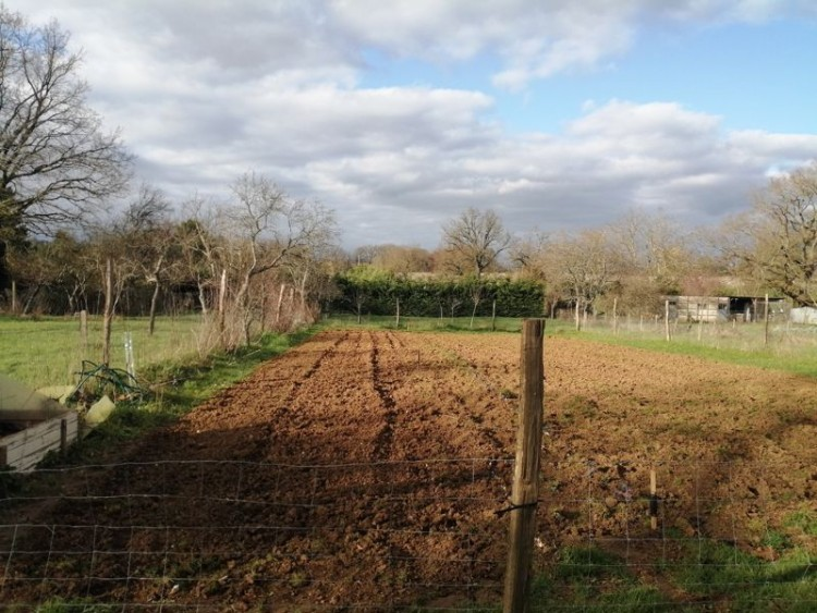 Property for Sale in Large, fully renovated, detached village property, Vienne, Near Availles-Limouzine, Vienne, Nouvelle-Aquitaine, France