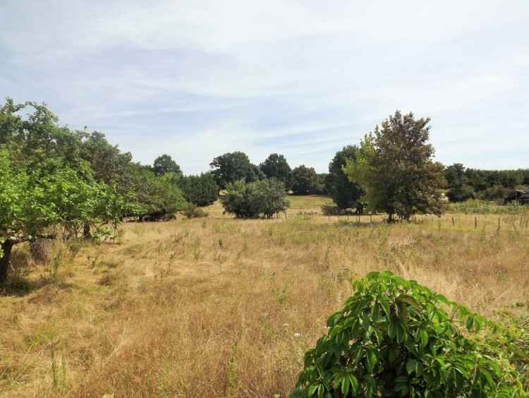 Property for Sale in Land Lavalade Ref :7388t-Mo, Dordogne, Lavalade, Nouvelle-Aquitaine, France