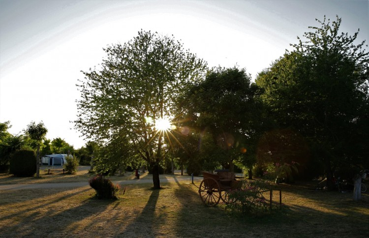 Property for Sale in Great opportunity to run successful camp site on over 8 acres, Vienne, Near Poitiers, Vienne, Nouvelle-Aquitaine, France