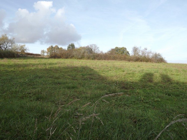 Property for Sale in Land Monpazier Ref :9087t-Mo, Dordogne, Monpazier, Nouvelle-Aquitaine, France