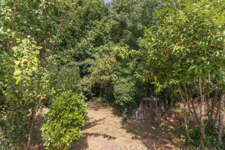 Property for Sale in Detached 3 bedroom villa with 1-bedroom apartment and a swimming pool, Charente, Nouvelle-Aquitaine, France