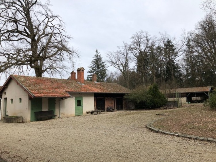 Property for Sale in Between Lyon and Geneva..., Ain, Lyon Nord, Auvergne-Rhône-Alpes, France