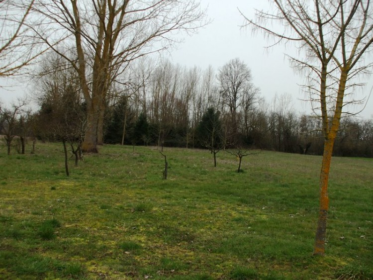 Property for Sale in A modern single storey property for sale close to Eymet and Miramont in a semi rural area on the edge of a small village., Lot-et-Garonne, Allemans du Dropt, Nouvelle-Aquitaine, France