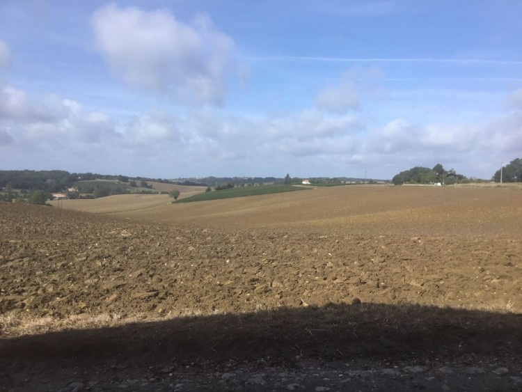 Property for Sale in A Stone Built Farmhouse with Outbuildings situated on the edge of a Village with a Market Town within 10 Minutes, Lot-et-Garonne, Escassefort, Nouvelle-Aquitaine, France