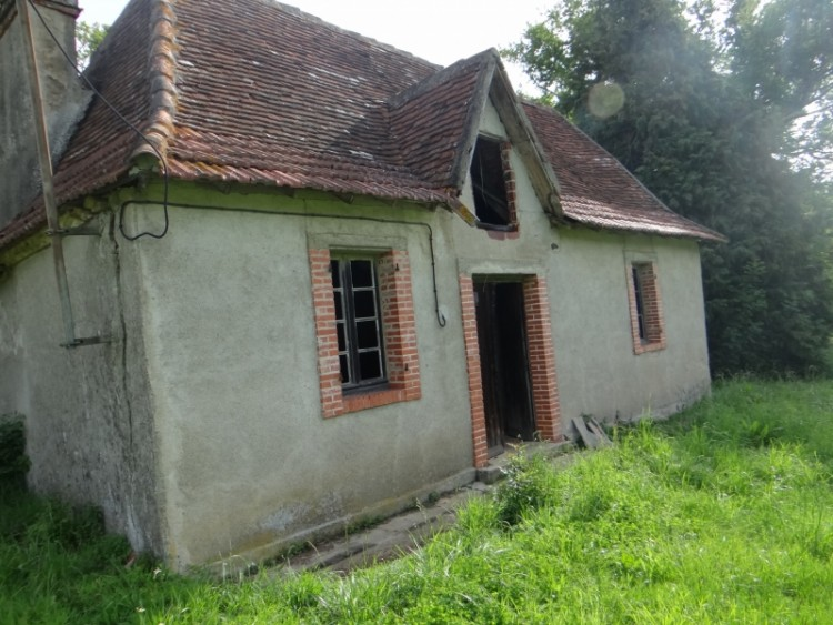 Property for Sale in Bearnaise house to renovate on 2000 m² of land, Pyrénées-Atlantiques, Nouvelle-Aquitaine, France