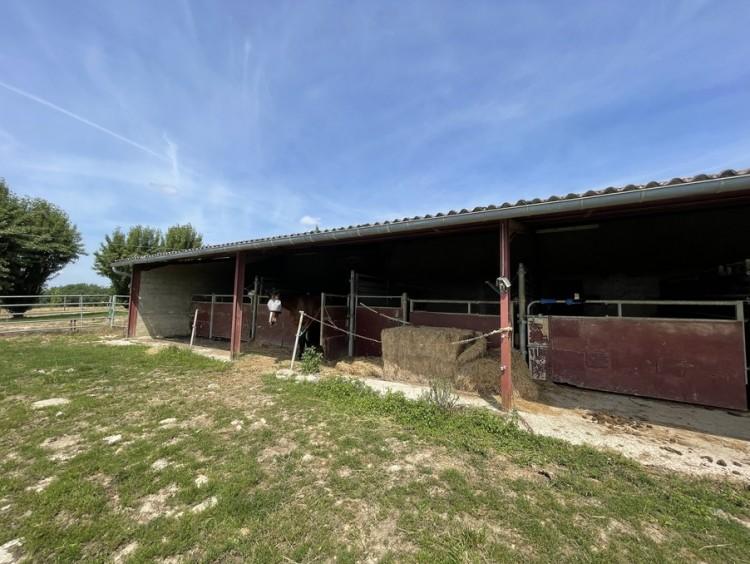 Property for Sale in House Monflanquin Ref :9586-Vi, Lot-et-Garonne, Monflanquin, Nouvelle-Aquitaine, France