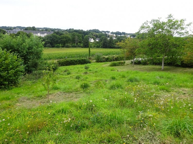 Property for Sale in Gouarec area - constructible land on around 2000 m², Côtes-d'Armor, Brittany, France