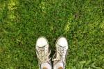 garden-copywright-fanatykk-Fotolia