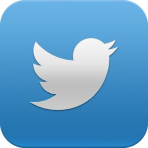 logo twitter significado