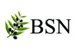 Bereavement support network short logo
