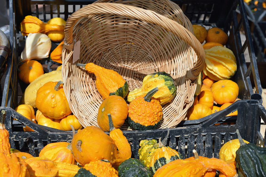 A bag of pumpkins at a French market