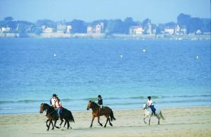 Horses on the beach, La Baule