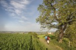 5 walking Pilgrims route of Gascony