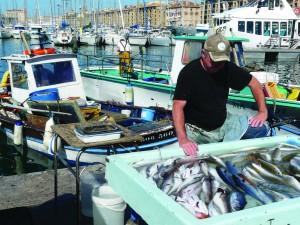 Fish market on the Quai des Belges