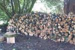 Woodpile Daniel Kearney