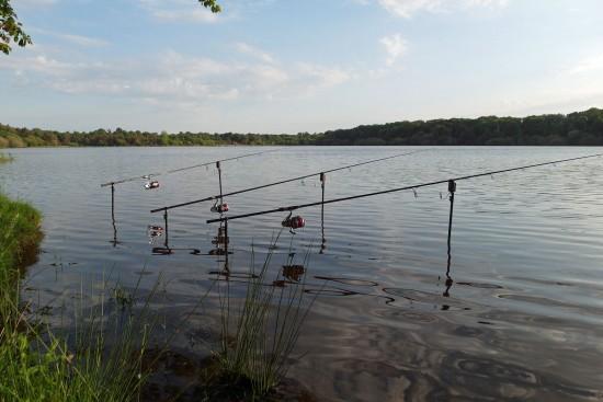 Carp fishing lake in France