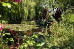 Giverny. Lillypads. Willows