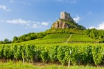 Vineyards at Solutre in Burgundy, recently added to the UNESCO cultural sites list