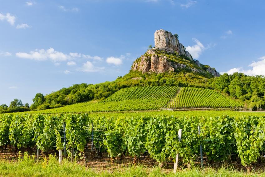 property guide to Burgundy, recently added to the UNESCO cultural sites list