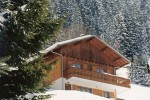 Chalet in the French Alps