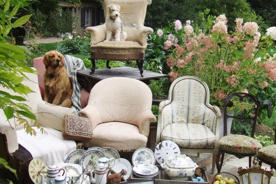 French dogs and antiques