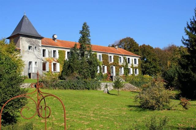 Charente, stunning 13 bed château project