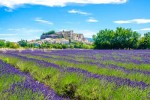 Provence village and lavender fields