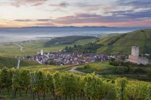 Visit Alsace Wine Route (3P1)
