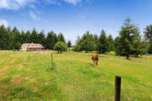 France equestrian property
