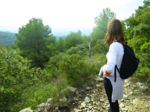 the views of the local hills in provence