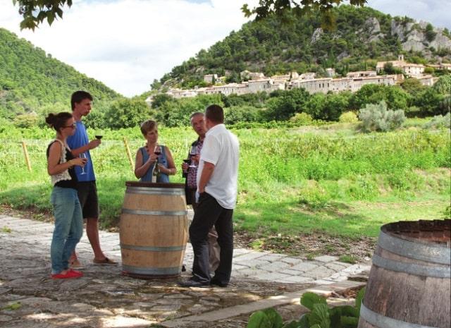 winetasting in a Séguret vineyard