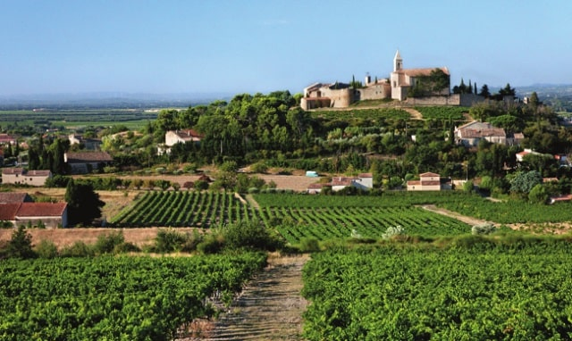 A gorgeous view across Cairanne's vineyards to the medieval village