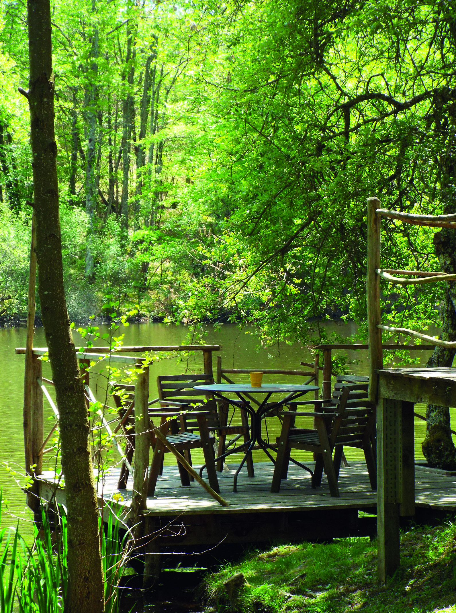 Dining room in the woods