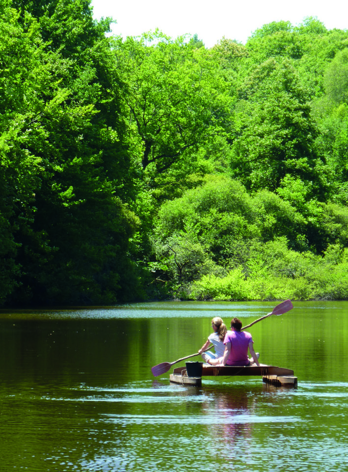 People rowing in the lake