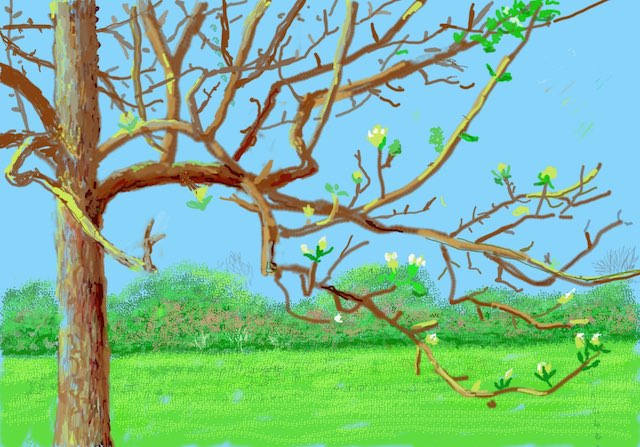 Ipad drawing of a tree