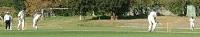Cricket in the Pays de la Loire