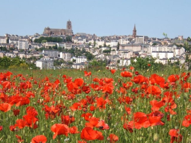Rodez Property Guide