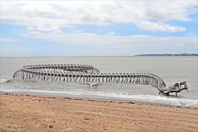 Enormous sea serpent surges out of the Loire River in France