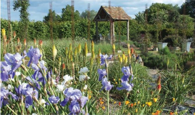 My French Garden in the Pays de la Loire