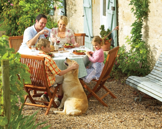 Pet friendly holidays in France