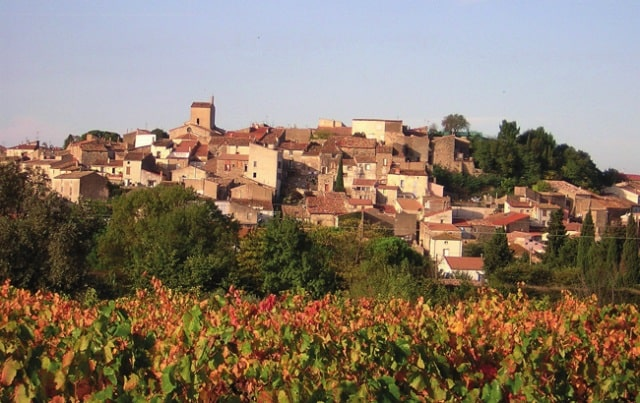 Where to buy in France now! – Magalas