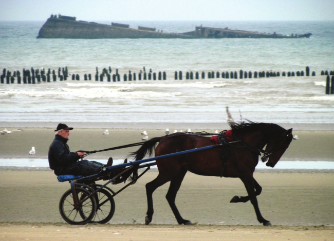 The Delights of Normandy
