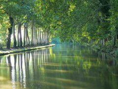 canal-minervois.jpg