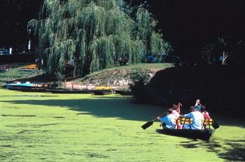 Marais Boat Trip